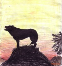 silouette drawing of howling wolf